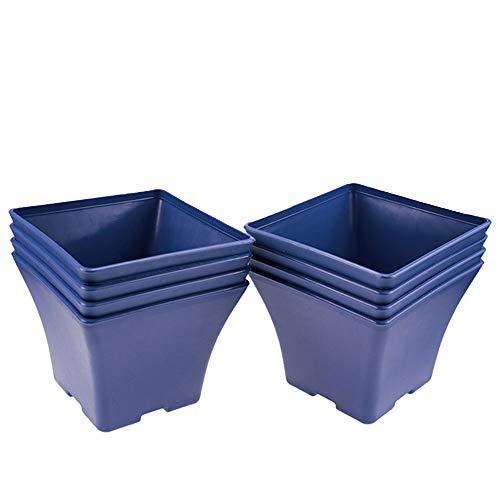 MUZHI 6x6 Inch Blue Square Garden Flower Pots, Heavy Duty Plastic Plant Pots Indoor 8 Pack ... ()