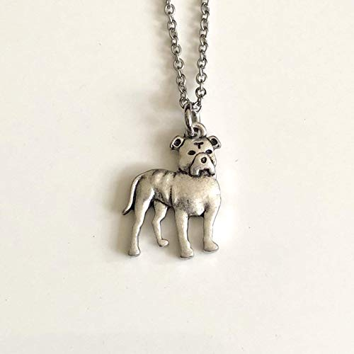 Pitbull Dog Necklace on Stainless Steel Chain - American Staffordshire Terrier - Dog Mom Gift