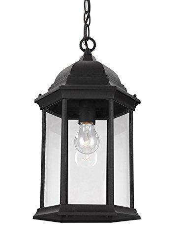 Sea Gull 6238701-12 Sevier Outdoor Pendant, 1-Light 100 Watts, Black