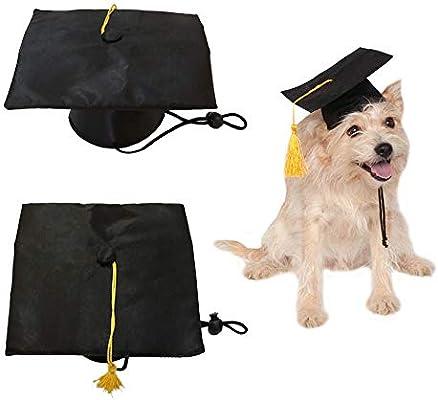 NIBESSER - Gorra de graduación para Perro, Gorro de Bachelor ...