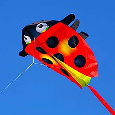 Ladybug Mini Nylon Kite: Toys & Games