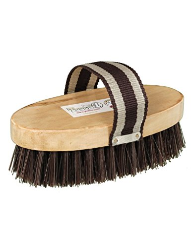 J.T. International 68-14-0-0 Horse - Grooming Horse Brush