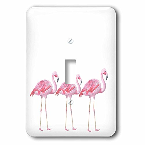 3dRose lsp_252317_1 Flamingos Birds Animals Wild Nature Illustration Single Toggle Switch by 3dRose