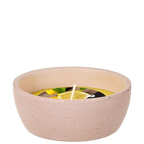 Spaas 12 Garden Candles Mini Terracotta Dish Citronella, Paraffin Wax Yellow, D 109 mm x H 46 mm