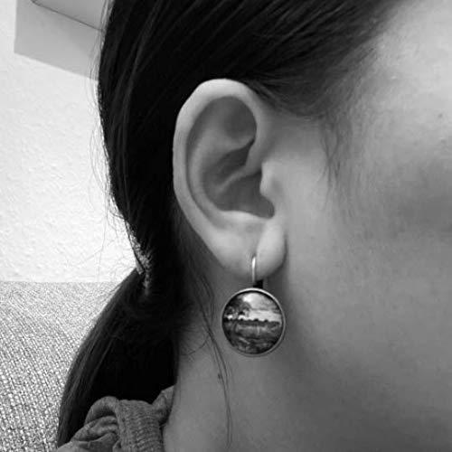 Paua Muschel Muster Ohrh/änger Cabochon 18mm Silber