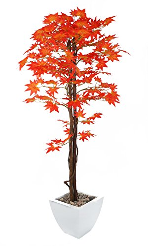 - Closer To Nature Artificial 5ft Red Japanese Maple Tree with Natural Stem - Artificial Silk Plant & Artificial Tree Range