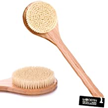Natural Dry Skin & Body Brush - Boar Bristles, Long Wooden Handle, Bamboo Body Spa Brush - Dry Brushing for Cellulite, Exfoliation, Detox & More - Free Skin Brush Visual Instruction Guide