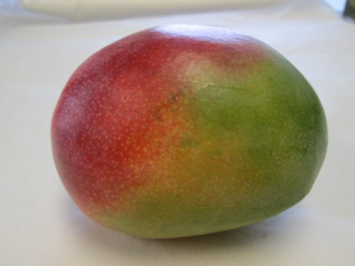 8 Selected Sweet and Juicy Fresh Large Mango Fruit - 9 Lb Pounds by hayden or kent (Image #1)