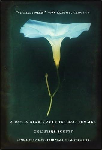 Book A Day, a Night, Another Day, Summer by Christine Schutt (1-Jun-2006)