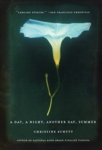 A Day, a Night, Another Day, Summer by Christine Schutt (1-Jun-2006) Paperback