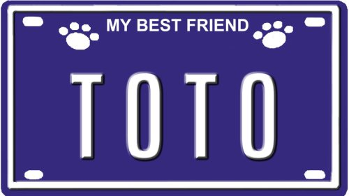 Image result for name Toto