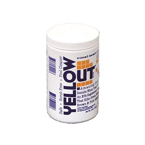 (Coral Seas YELLOWOUT Pool Cleaner Yellow Out Algaecide 2lb)