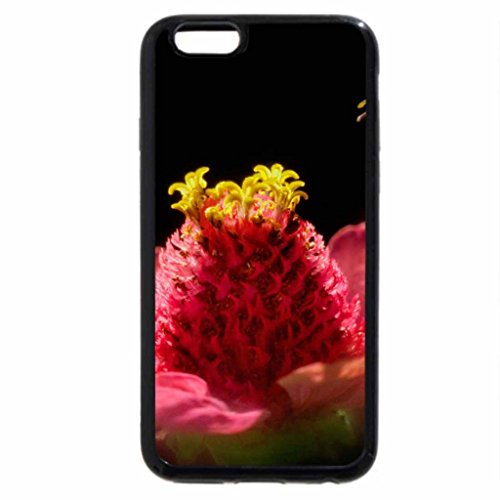 iPhone 6S / iPhone 6 Case (Black) Flower and bees