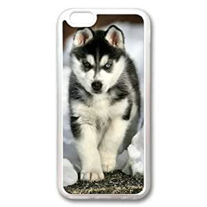 iphone 5 5s Case, Siberian Husky Puppy Custom Case for iphone 5 5s Soft TPU Material Transparent