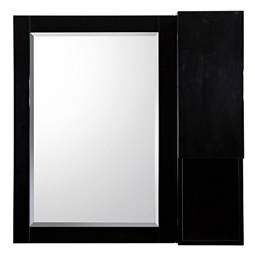 Pegasus EYGBM2828 Esley 28 in. L x 28 in. W Wall Hung Mirror in Gloss Black with Side Shelf by Pegasus