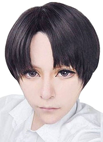 Free Hair Cap + Attack on Titan Black Levi / Rivaille Cosplay Wig