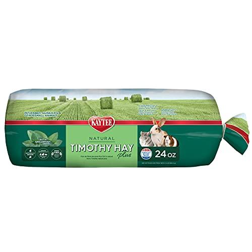 Kaytee Timothy Hay Plus Mint 24 oz