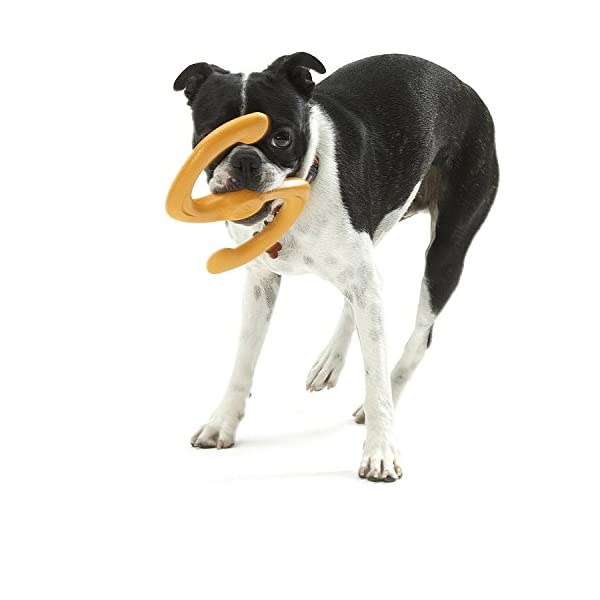 West Paw Zogoflex Bumi Interactive Tug of War Durable Dog Play Toy, 100% Guaranteed Tough, It Floats!, Made in USA… Click on image for further info. 4