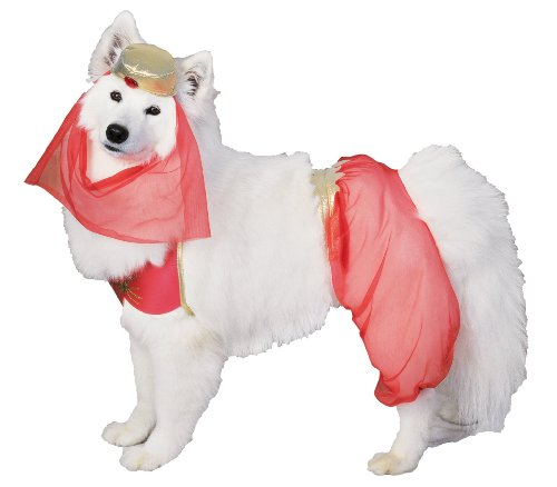 Harem Dog Pet Costume - Large - Pet Costumes]()