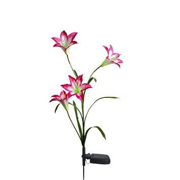 4LED Fleur Solaire Lis Pelouse Cour Lampe Jardin Noël Extérieur ...