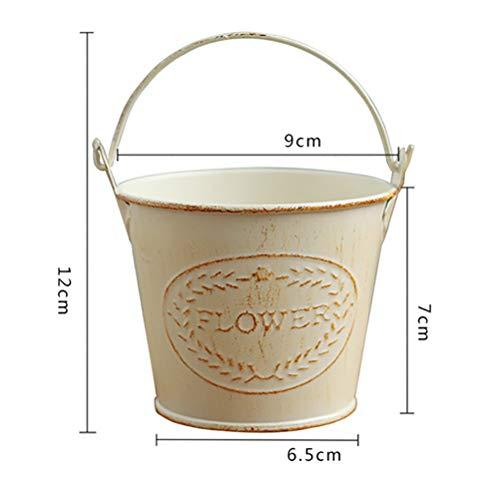 Amazon.com: RGANT Cubo de metal rústico para colgar macetas ...