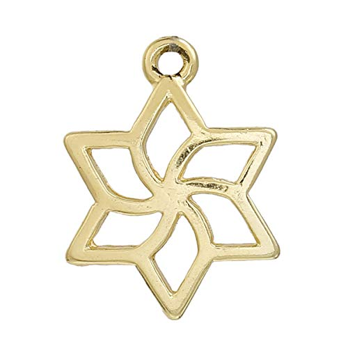 (PEPPERLONELY 20pc Plated Gold Alloy Star of David Flower Carved Hollow Charms Pendants 23x17mm (7/8