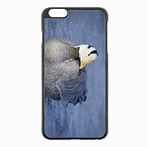 iPhone 6 Plus Black Hardshell Case 5.5inch - feathers winter Desin Images Protector Back Cover