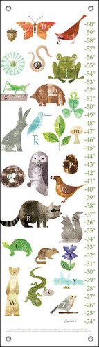 Oopsy Daisy Forest Friends A to Z Maria Carluccio Growth Charts, 12 x 42'' by Oopsy Daisy