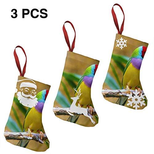 "QwqzqqN Gouldian Finch Personalized Stockings Home Decoration Christmas Stockings 3 Pcs Set 7.5"""