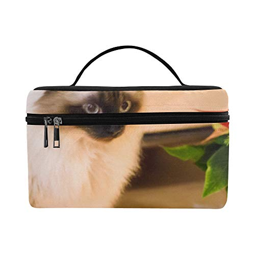 The Red Rose Broke The Pot Cat Pattern Lunch Box Tote Bag Lunch Holder Insulated Lunch Cooler Bag For Women/men/picnic/boating/beach/fishing/school/work ()