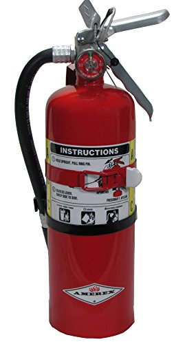 Amerex B402T, 5lb ABC Dry Chemical Class A B C Fire Extinguisher, with Vehicle (Best Dot-01 Car Covers)