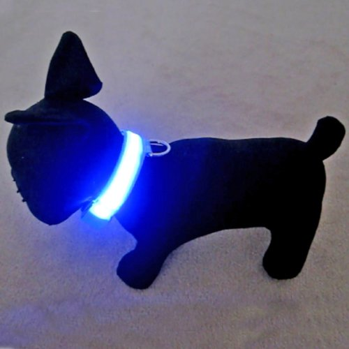 Alfie Couture Pet Accessory – Flashing Pet Safety Collar – Collar Color: Baby Blue, LED Light Color: Blue, Size: XL, My Pet Supplies