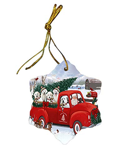 Christmas Santa Express Delivery Great Pyrenees Dog Family Star Porcelain Ornament ()