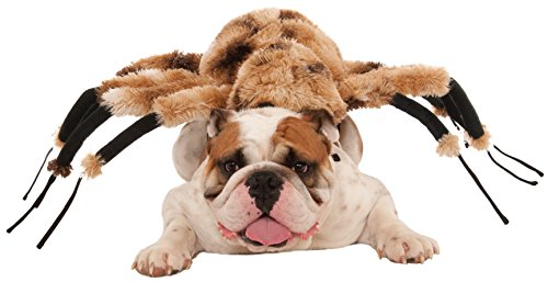 Giant (Tarantula Pet Costume)