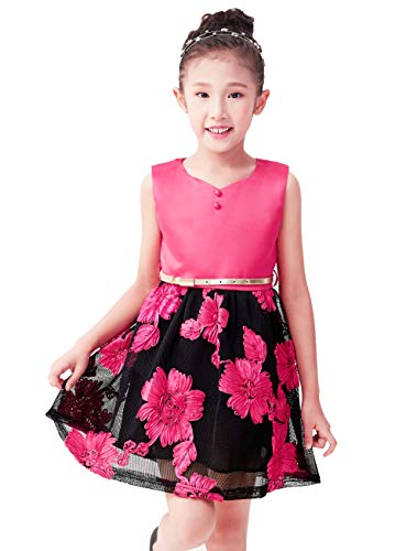 Fancy Dresses for Girls Lace Dress for Girls Dresses Little Girls Dresses Little Kids Dresses Size 4 Age 3-4 Years Old (Hot Pink, 4) -