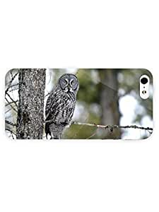 3d Full Wrap Case for iPhone 5/5s Animal Gray Owl On The Tree