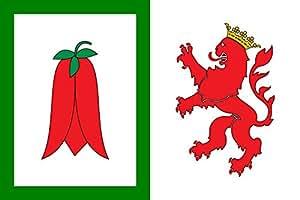 Arauco, Chile Flag | landscape flag | 0.06m² | 0.65sqft | 20x30cm | 8x12in for Diplomat-Flags Car Flag Poles