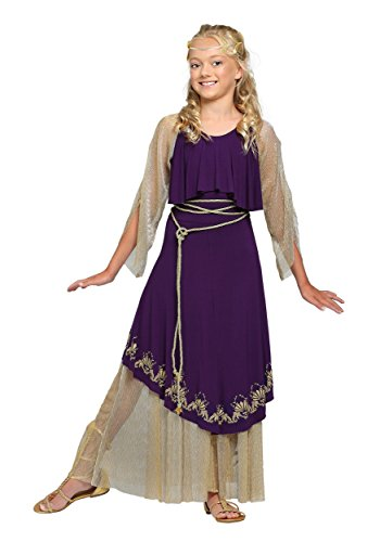 [Fun Costumes Aphrodite Goddess Costume Medium (8-10)] (Aphrodite Costume)