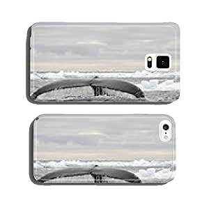 Tail view of Humpback whale in Antarctica cell phone cover case iPhone6