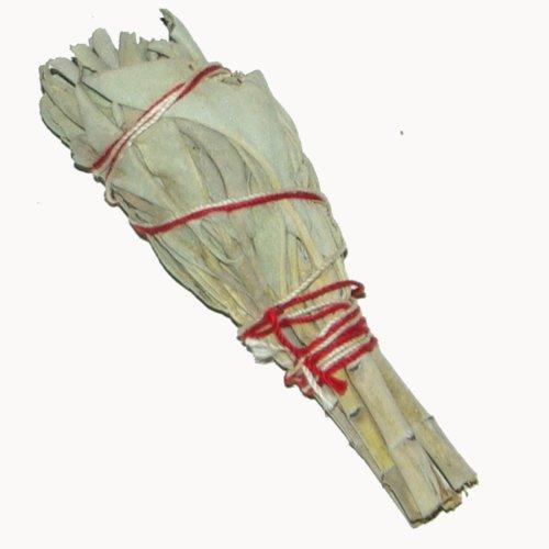 Baton Purificateur Sauge Blanche MINI- Salvia Apiana - Encens WHITE SAGE 1 x Mini Smudge 3-4'' (~11cm, ~20-25gr.) batons / empaqueter / ballot