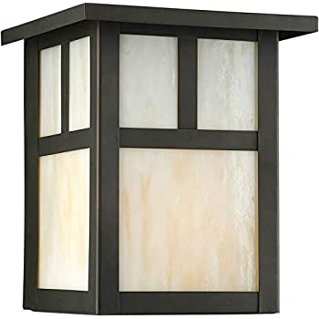 Forte Lighting 1069 01 14 Transitional 1 Light Exterior