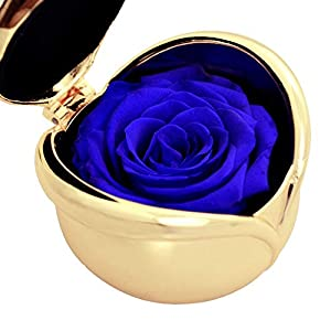 Handmade Preserved Rose Present, Exquisite Fresh Roses Upscale Immortal Flowers Best Gift for Female Birthday, Anniversary, Christmas 67