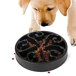 JASGOOD Slow Feeder Dog Bowl New Arriving Fun Feeder Slow Feeding Interactive Bloat Stop Dog Bowls 2