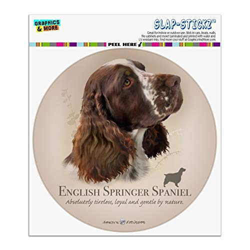 Springer Spaniel Sticker - Graphics and More English Springer Spaniel Dog Breed Automotive Car Window Locker Circle Bumper Sticker