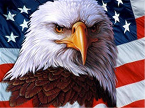 Paint by Number Kits - American Flag Eagle 16x20 Inch Linen Canvas Paintworks - Digital Oil Painting Canvas Kits for Adults Children Kids Decorations Gifts (with Frame) ()