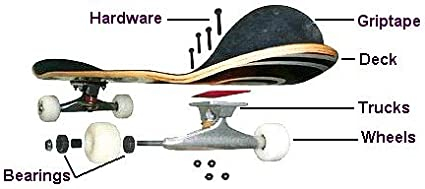 8.5 x 32.25 Toy Machine Skateboards Axel Cruysberghs Surfer Skateboard Deck