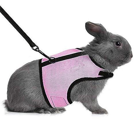 MEISO Arnés y correa para conejo para correr caminar correr con ...