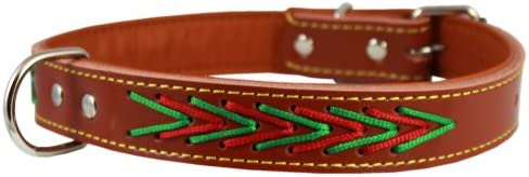 Genuine Leather Dog Collar 21.5 x1 Fits 16 -20 Neck Medium