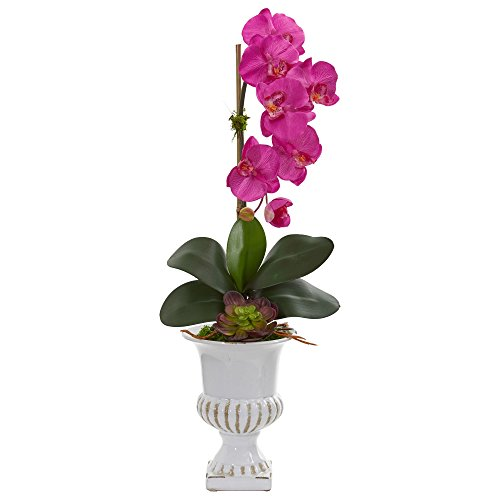 Nearly Natural 1604-DP Phalaenopsis Orchid and Succulent Artificial Urn Silk Arrangements, Dark Pink