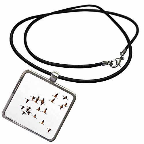 Migration Cord (3dRose Taiche - Vector - Storks - Migration Of The Stalks Vector - Necklace With Rectangle Pendant (ncl_264505_1))